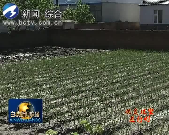 2019.5.24白城新闻联播