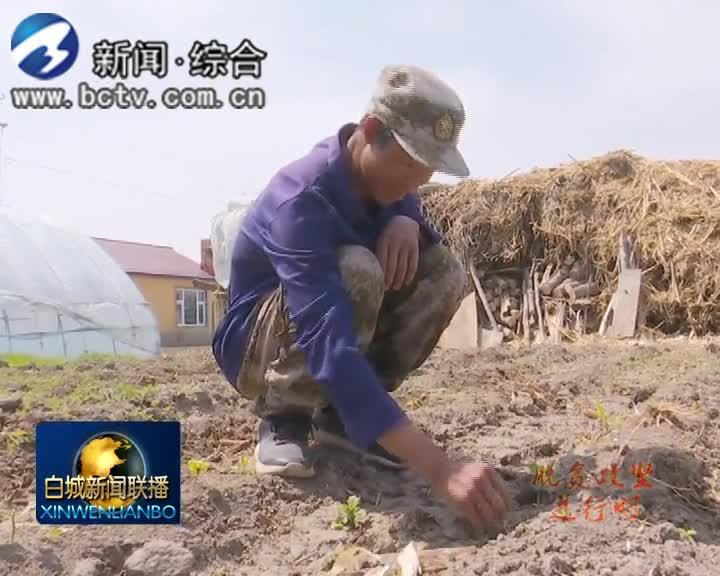 2019.5.25白城新闻联播
