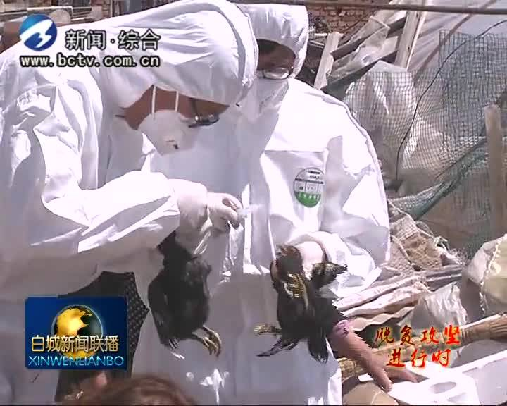 2019.6.3白城新闻联播