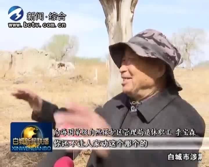 《壮丽70年  奋斗新时代》心在向海(上)