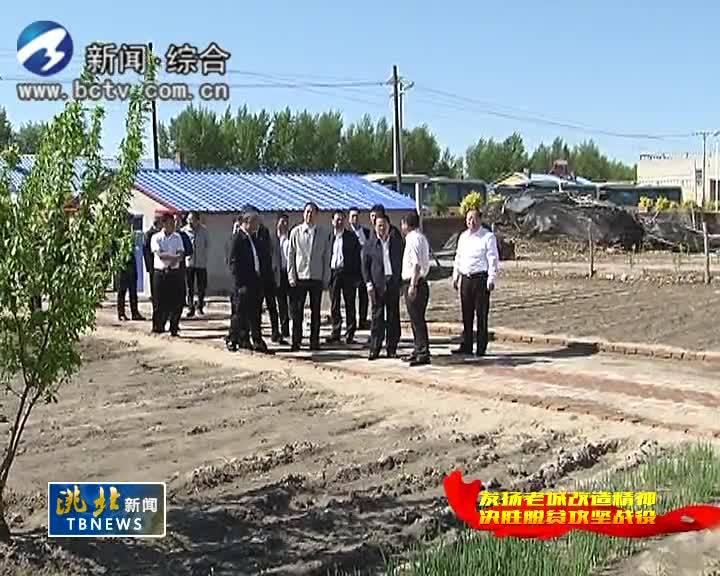 5月23日洮北新闻