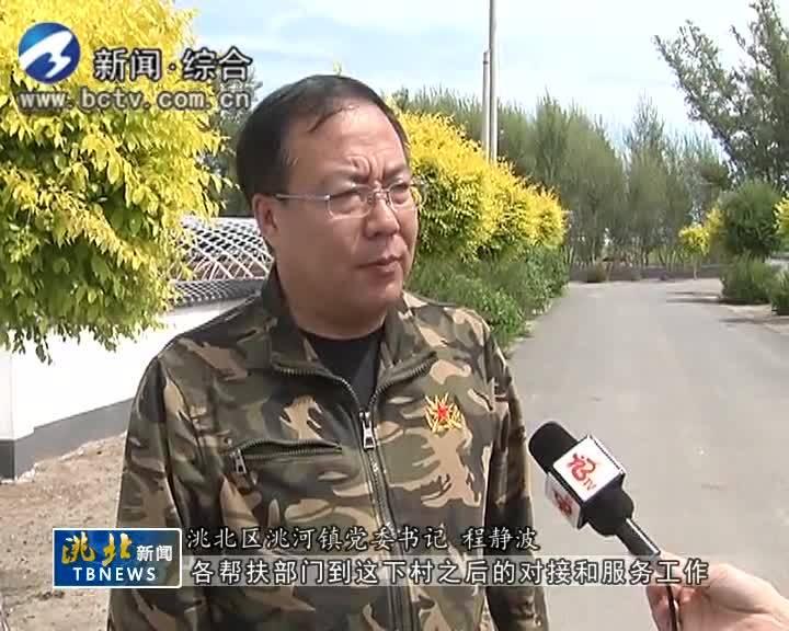6月5日洮北新闻