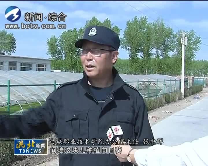 5月10日洮北新闻