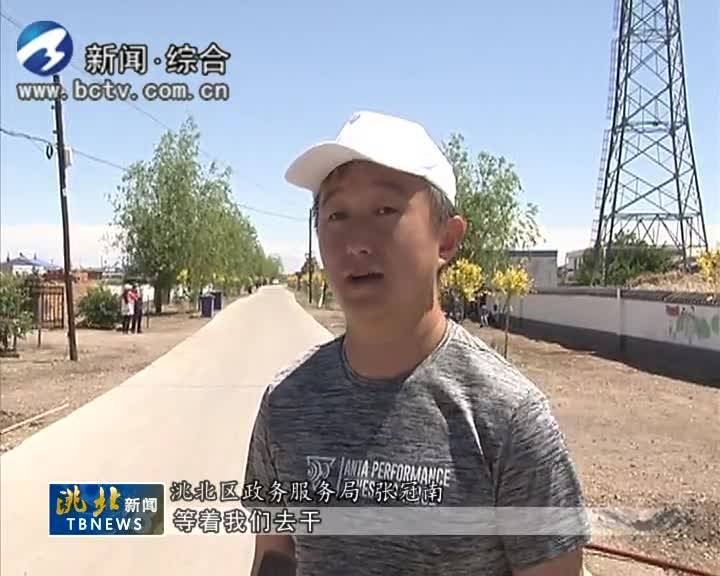 6月13日 洮北新闻