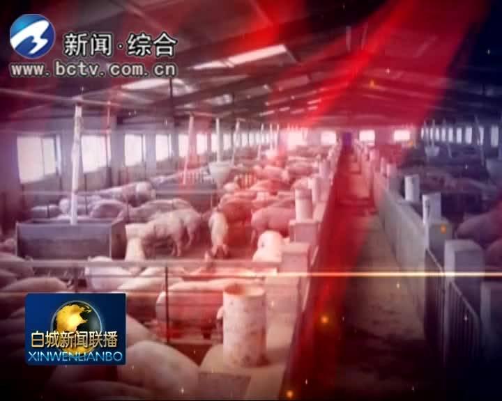 2019.7.13白城新闻联播