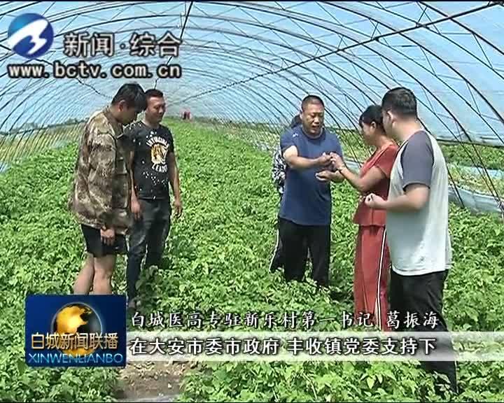 2019.8.6 白城新闻联播