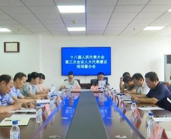 集安市十八届人民代表大会第三次会议人大代表建议现场督办会