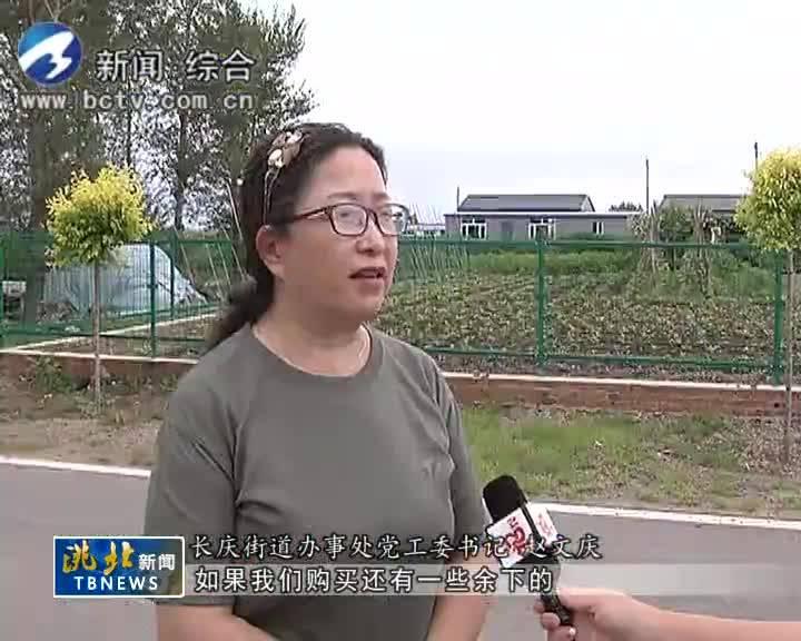 7月26日洮北新闻