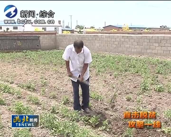 7月17日洮北新闻
