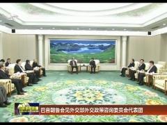 巴音朝鲁会见外交部外交政策咨询委员会代表团