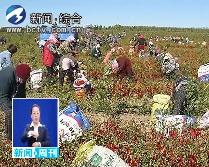 2019.10.13白城新闻周刊