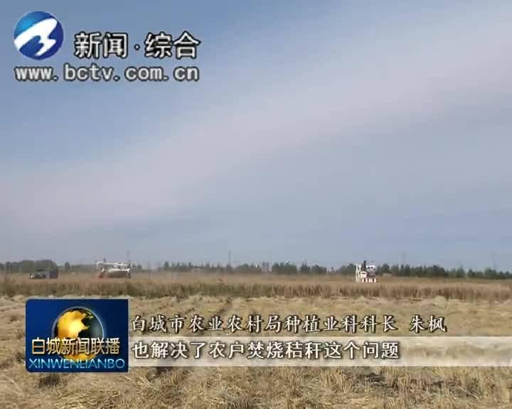 2019.10.12白城新闻联播