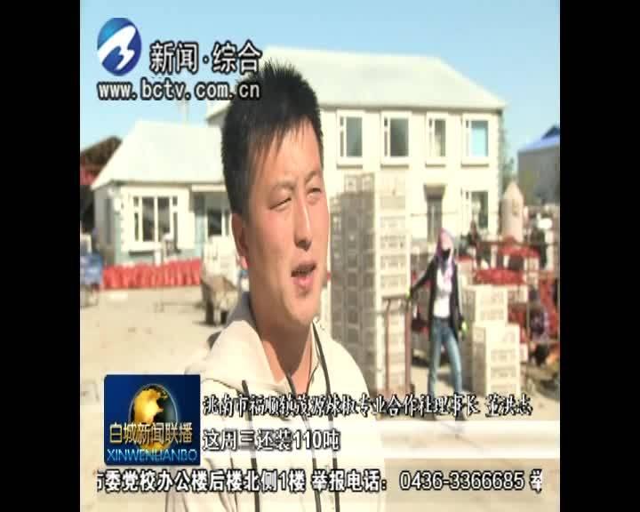 """《脱贫攻坚进行时》福顺镇:特色产业小辣椒 富了农民""""钱袋子"""""""