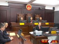 集安市人民法院公开宣判一起涉恶案件