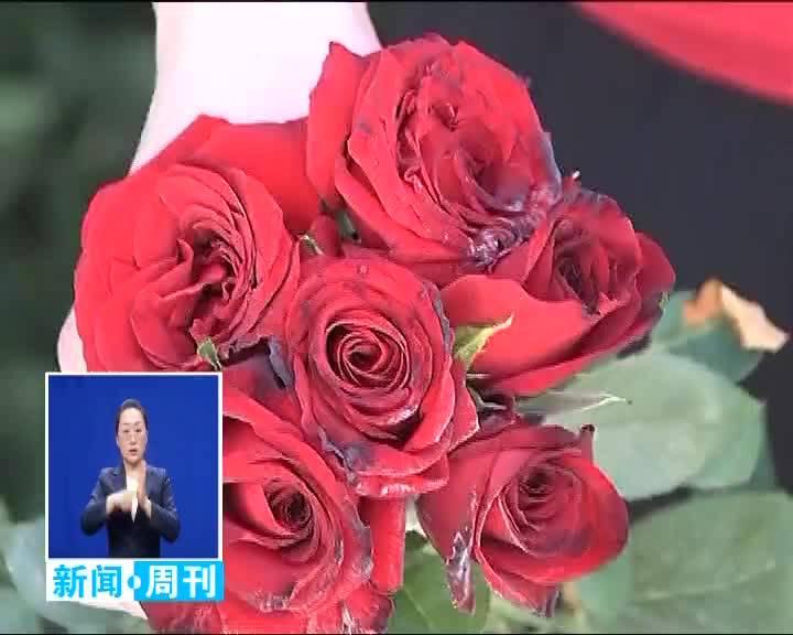 2020.6.7 白城新闻周刊