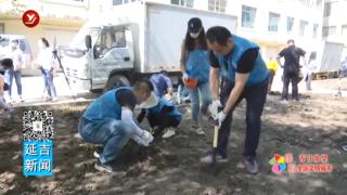 志愿者栽下6万株花苗为创城贡献青年力量