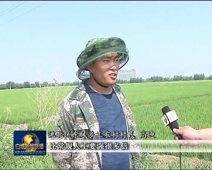 2020.8.6 白城新闻联播