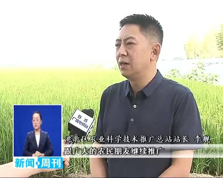 2020.8.9 白城新闻周刊