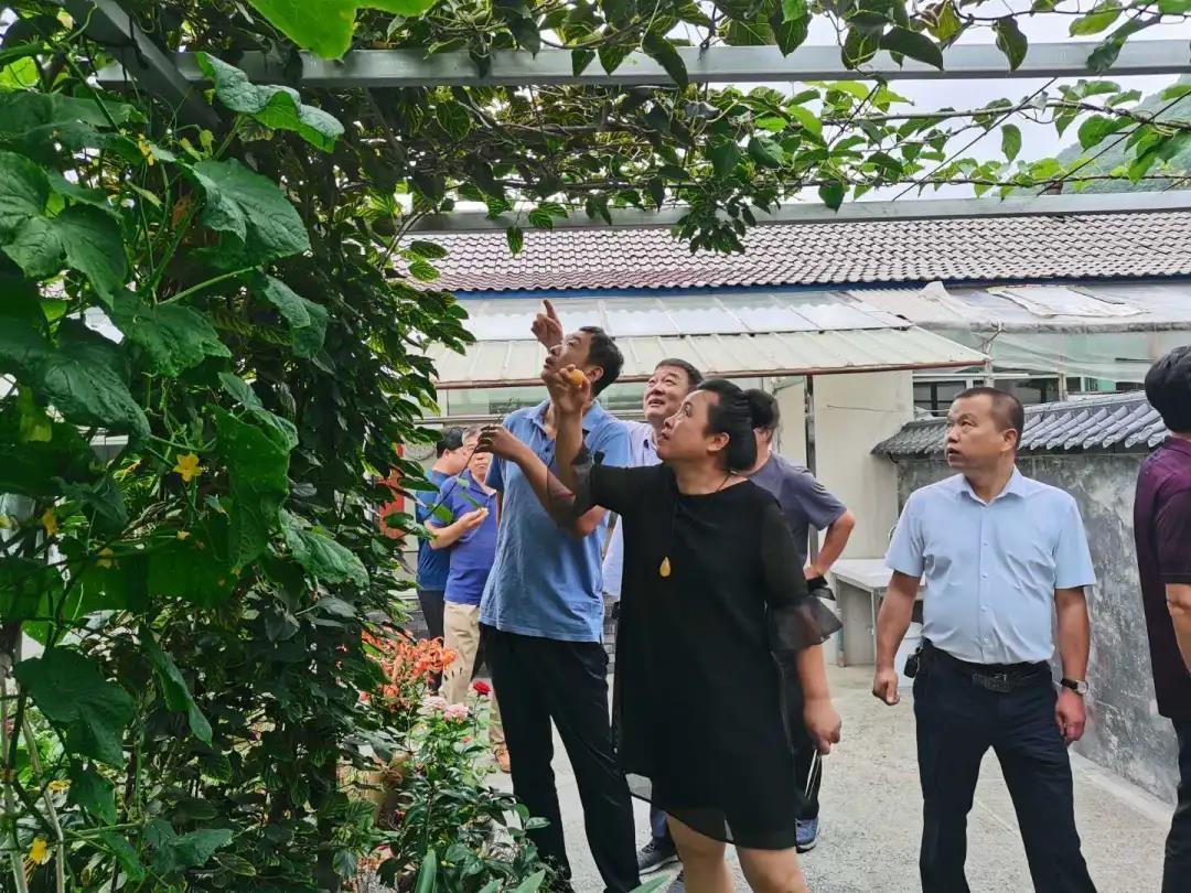 花山镇开展乡村振兴现场观摩学习活动