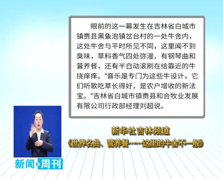 2020.12.13 白城新闻周刊