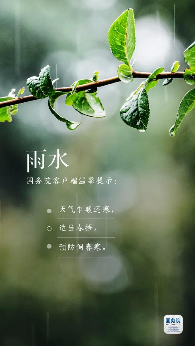 今日雨水丨好雨知时节,当春乃发生
