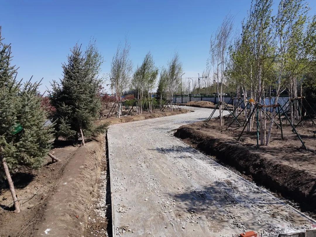 【查干湖保护和开发进行时】查干湖生态小镇排涝及慢性系统工程如期推进