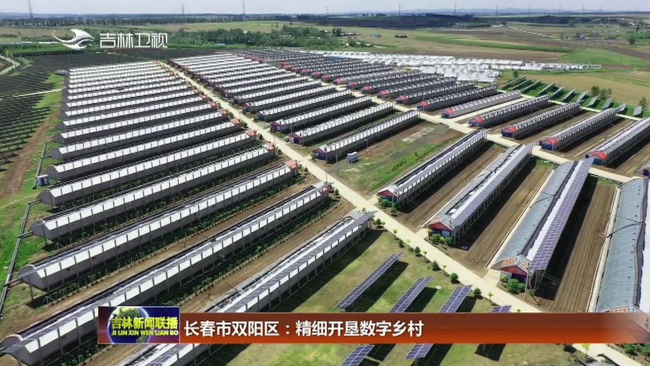长春市双阳区:精细开垦数字乡村