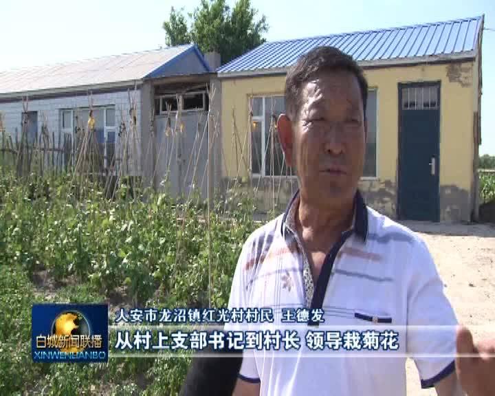 《奋斗百年路 启航新征程•乡村振兴》创新乡村振兴新思路 助力农民增产增收