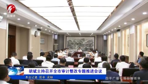 胡斌主持召开全市审计整改专题推进会议