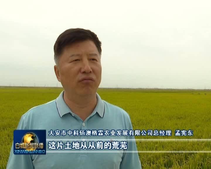 《奋斗百年路 启航新征程·乡村振兴》全市各地多措并举 助力农业增产农民增收