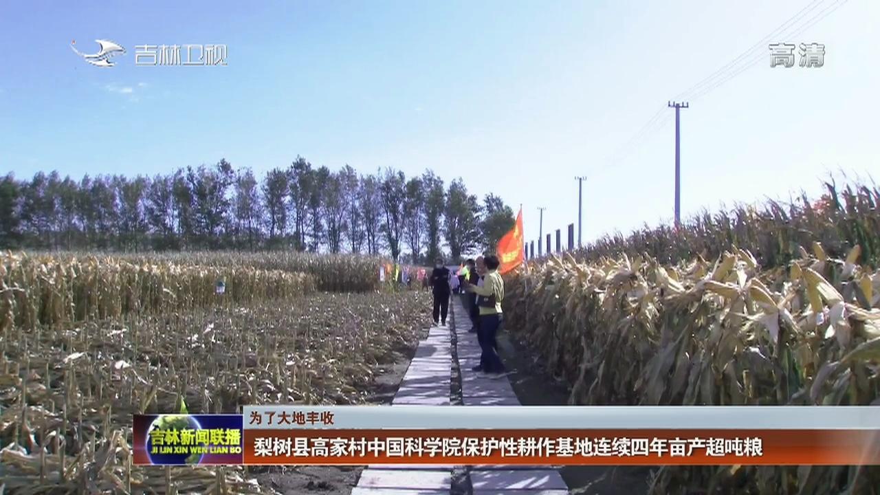 【为了大地丰收】梨树县高家村中国科学院保护性耕作基地连续四年亩产超吨粮