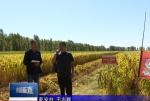 直通县市区2021年10月22日乾安     传经送宝到地头 农业生产迈大步VA0