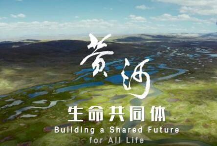 全球连线   纪录片《生命共同体——黄河》